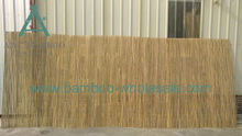 Раскол з бамбукавай агароджы