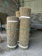 Bamboo Brush Fence