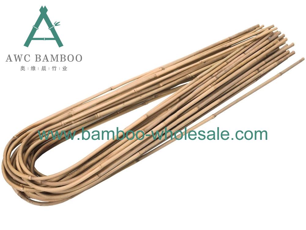 Hoops bambù