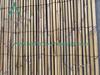 Забор з белага папараці